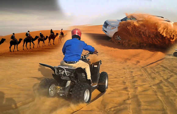 Reasons why going on a desert safari trip is the best activity in Dubai